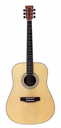 hvad koster en guitar
