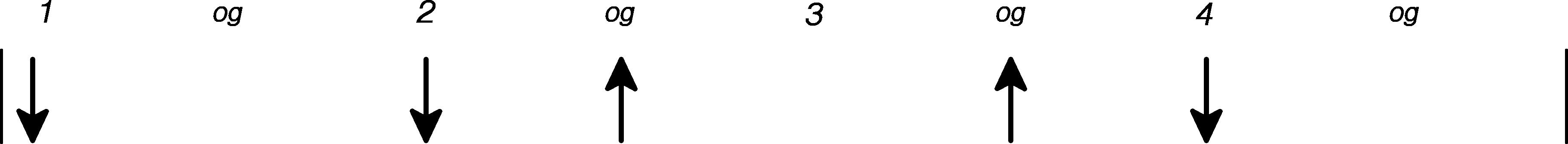 Lejrbåls guitar rytmen som grafik